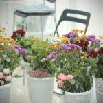 Курс Флорист-аранжировщик в Новосибирске