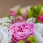 Свадьба в классическом стиле Новосибирск